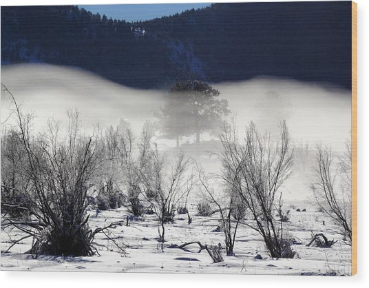 A Blanket Of Fog Wood Print