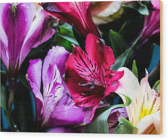 A Bouquet Of Peruvian Lilies Wood Print