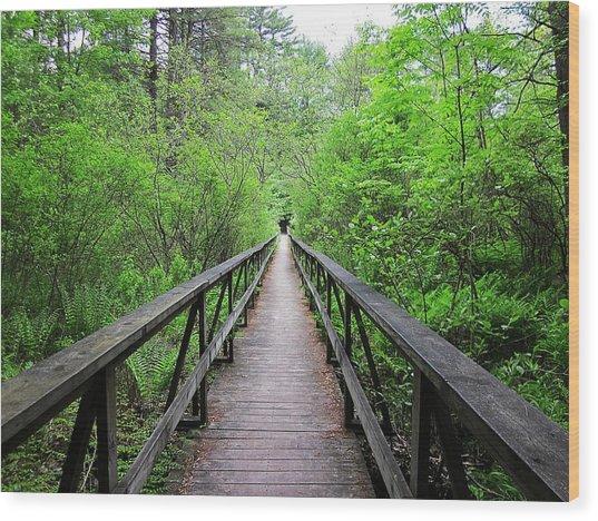 A Bridge To Somewhere Wood Print