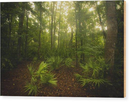 A Bright Morning Wood Print