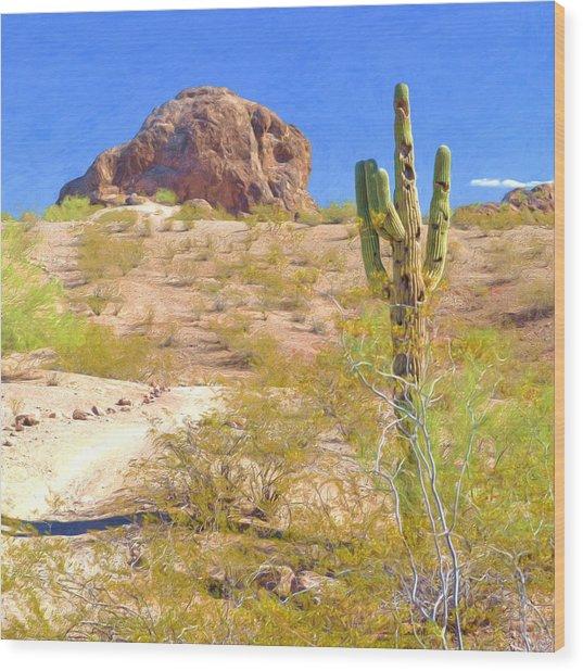 A Cactus In The Arizona Desert Wood Print