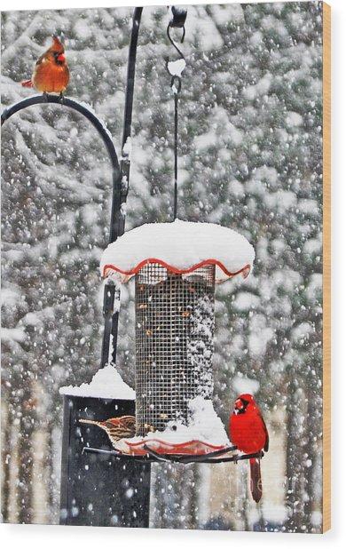 A Cardinal Winter Wood Print