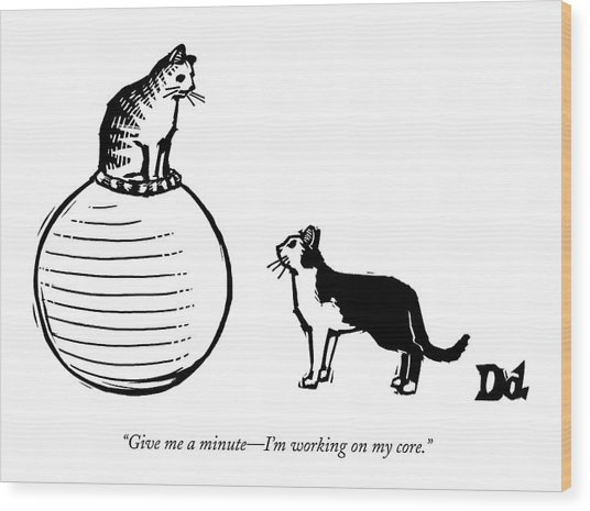 A Cat Stands On A Large Exercise Ball Wood Print