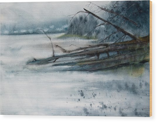 A Cold And Foggy View Wood Print