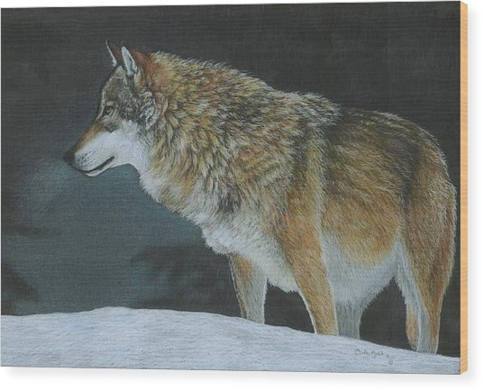 A Cold Winter's Night Wood Print