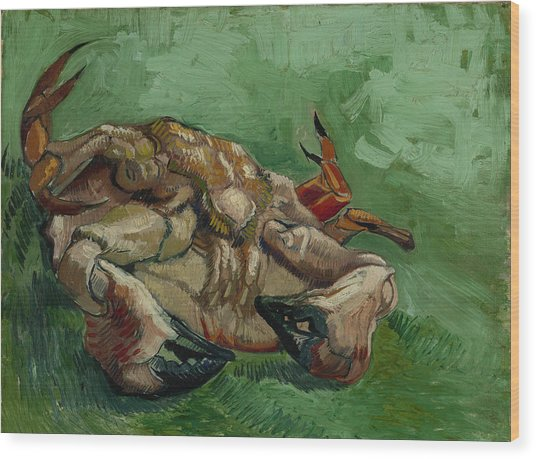 A Crab On Its Back Wood Print by Vincent van Gogh