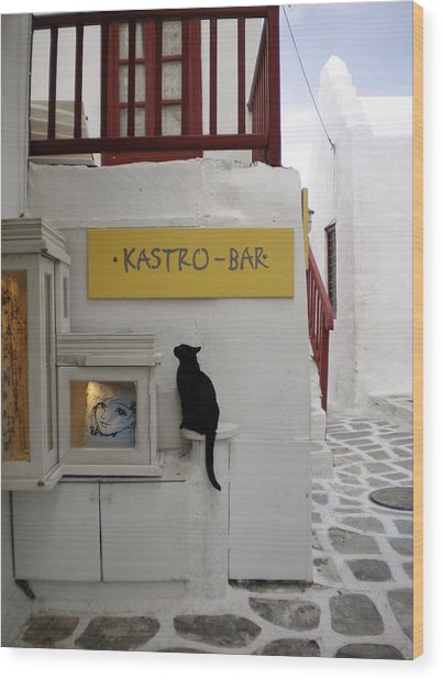 A Curious Cat In Mykonos Wood Print