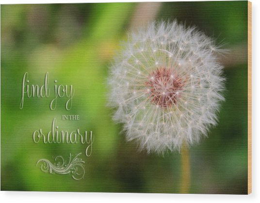 A Dandy Dandelion With Message Wood Print