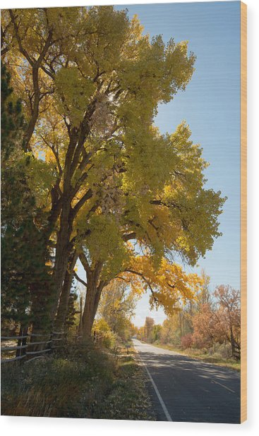 A Day For A Daydream Wood Print by Allen Lefever