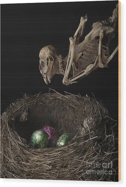 A Dead Bird Flies Into Its Nest Only To Find Chocolate Eggs Wood Print