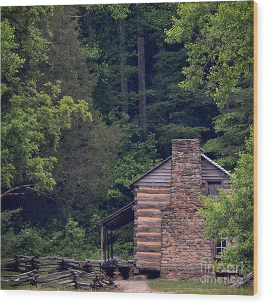 A Different View Of A Mountain Cabin Wood Print by Eva Thomas