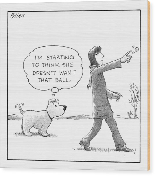 A Dog Thinks To Himself As A Woman Throws A Ball Wood Print