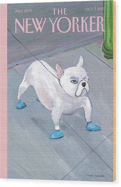 A Dog Wears Shoes On The City Sidewalk Wood Print