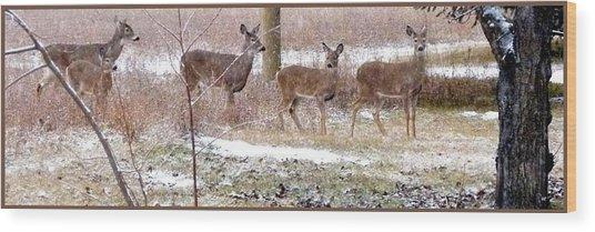 A Dusting On The Deer Wood Print
