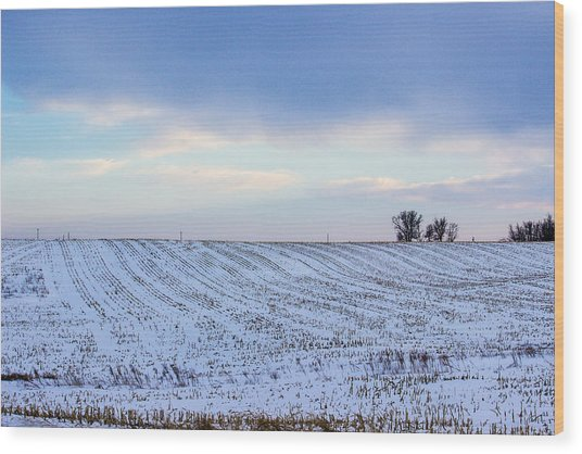 A Field In Iowa At Sunset Wood Print