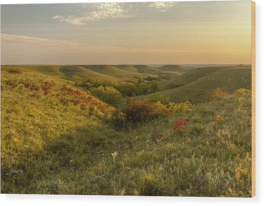 A Flint Hills View Wood Print