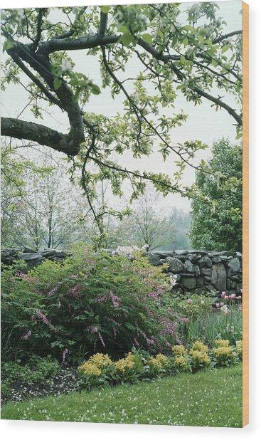 A Flower Bed In Mrs. Frank Audibert's Garden Wood Print