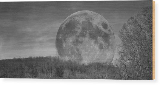 A Friend At Night Wood Print