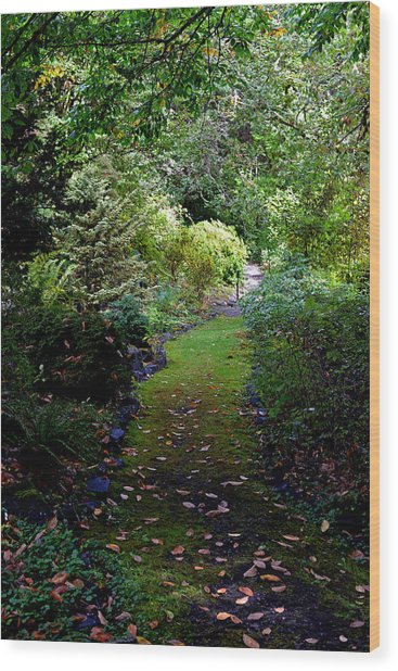 A Garden Path Wood Print