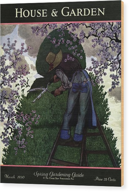 A Gardener Pruning A Tree Wood Print