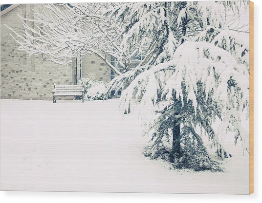 A Gentle Frosting Wood Print