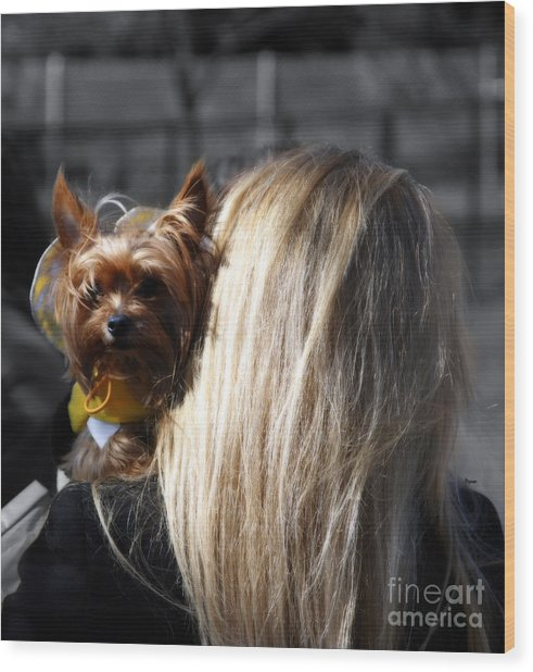 A Girl And Her Dog Wood Print by Steven Digman