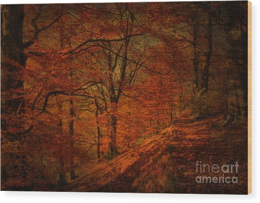A Golden Day Wood Print