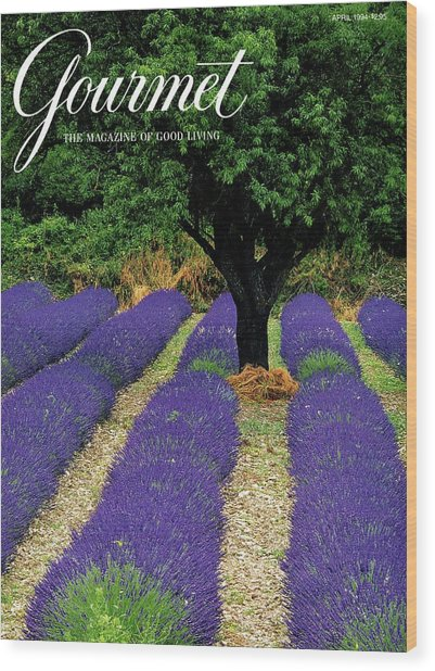A Gourmet Cover Of A Lavender Field Wood Print