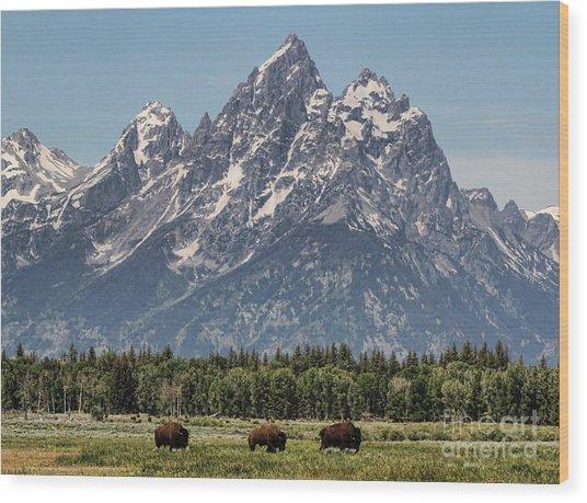A Grand View Wood Print
