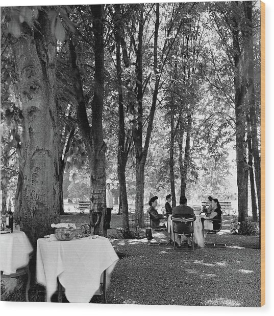 A Group Of People Eating Lunch Under Trees Wood Print