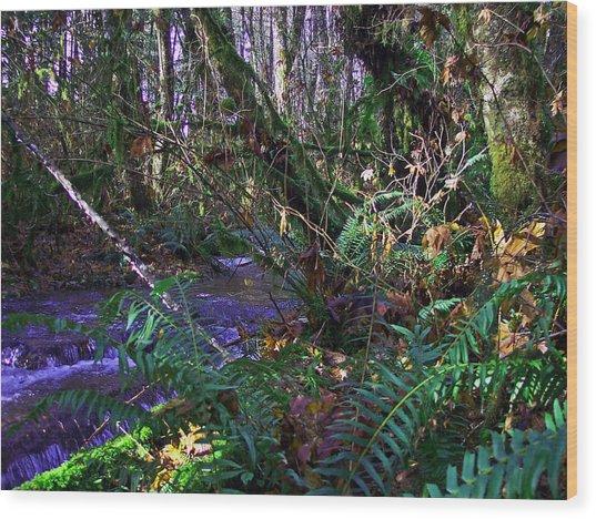 A Hidden Creek Wood Print