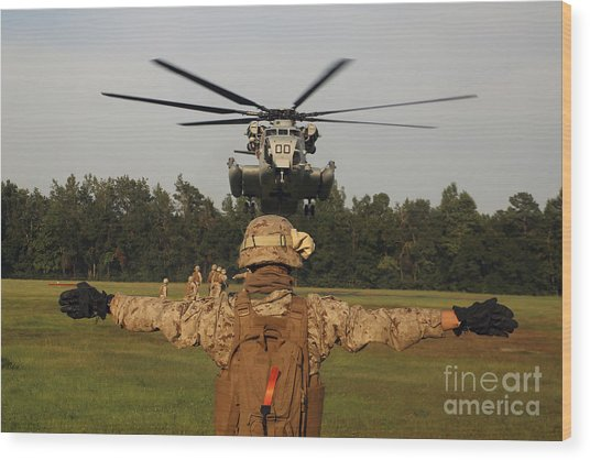 A Landing Support Specialist Guides Wood Print