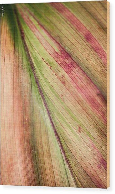 A Leaf Wood Print