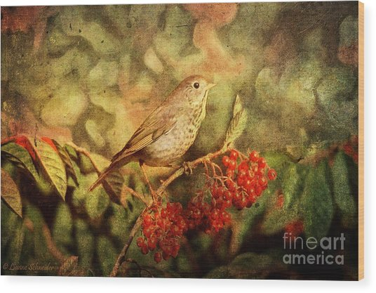 A Little Bird With Plumage Brown Wood Print