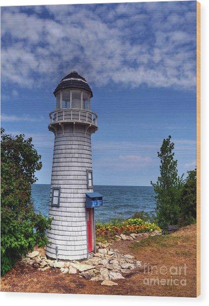 A Little Lighthouse Wood Print by Mel Steinhauer
