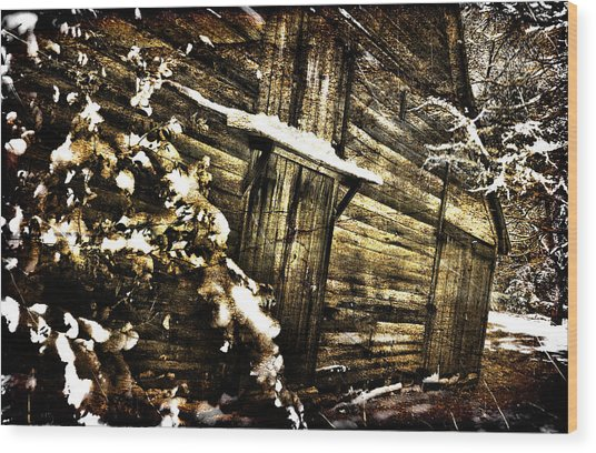 A Little Snow In Sc Wood Print