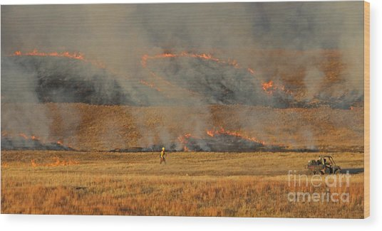 A Lone Firefighter On The Norbeck Prescribed Fire. Wood Print