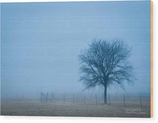 A Lone Tree In The Fog Wood Print