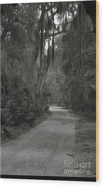 A Lonely Road Wood Print by Debbie Bailey