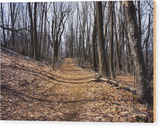 A Lonely Road Wood Print