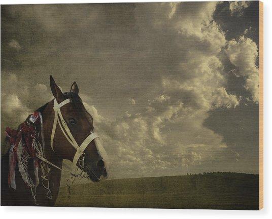 A Lovely Horse Wood Print