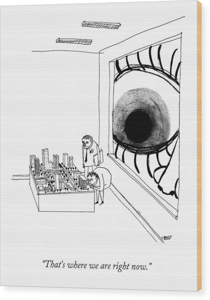 A Man Looks Into The Window Of A Miniature Wood Print