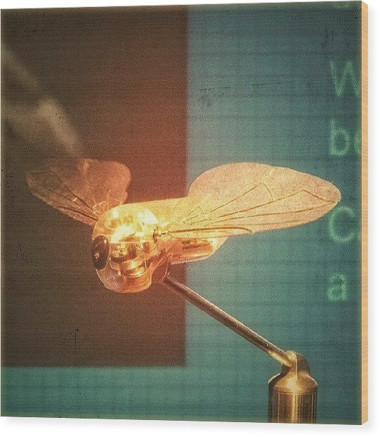 A #mechanical #fly From A #birmingham Wood Print