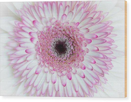 A Million Petals Wood Print