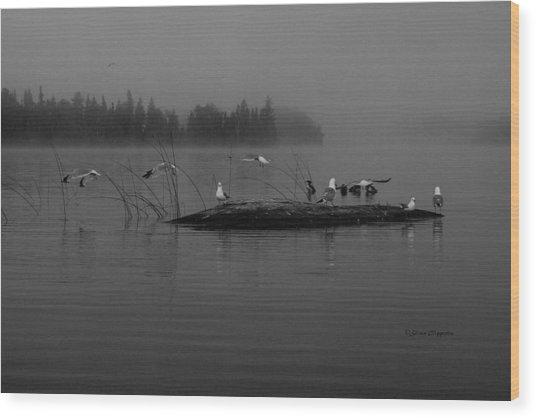 A Misty Greeting  Wood Print