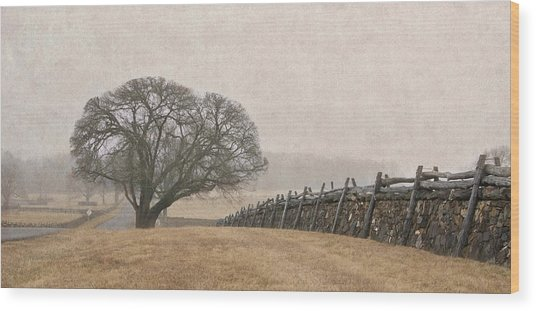 A Misty Morning In Horse Country Wood Print