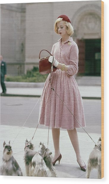 A Model Wearing An Anne Fogarty Dress Wood Print