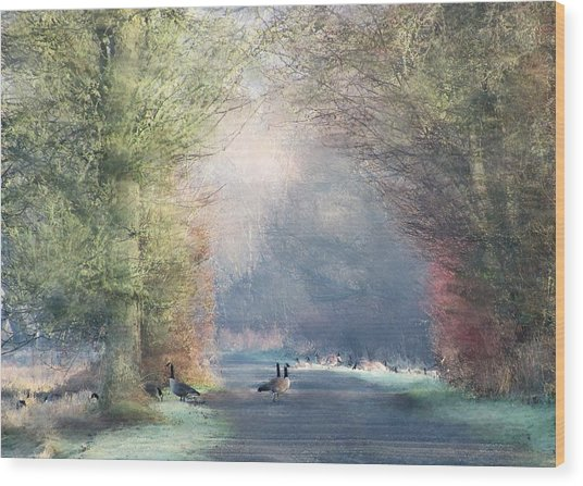 A Morning In Eden Wood Print