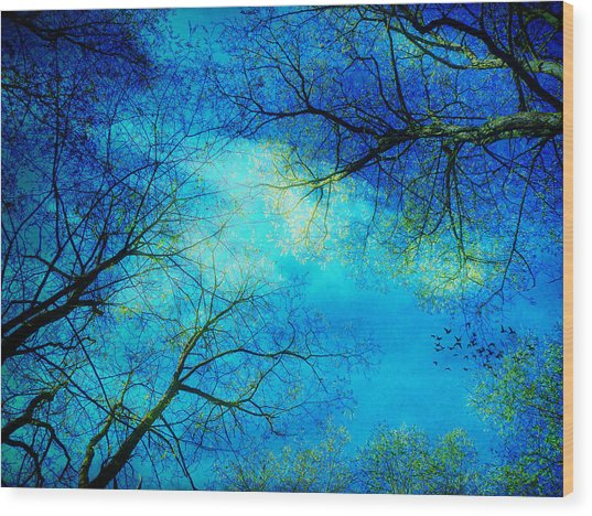 A New Day Wood Print by Angela Bruno