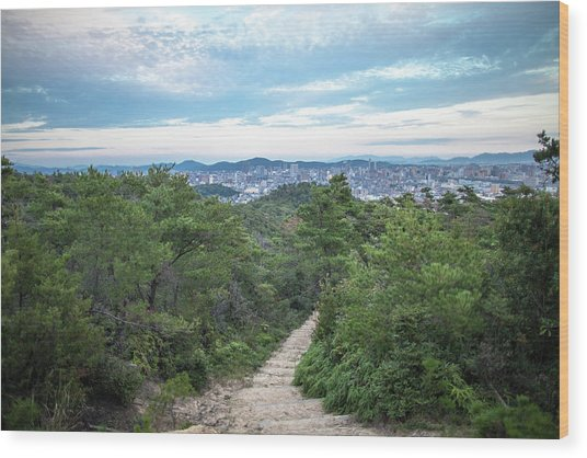 A Path Leading Up A Mountain With City Wood Print